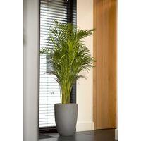 Capi krukke Urban Smooth Elegant Low 36x47 cm lysegrå
