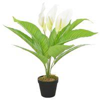 vidaXL kunstig plante anthurium med urtepotte hvid 55 cm