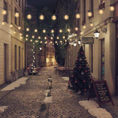 vidaXL udendørs lysguirlande 20 stk oval julepynt 23 m