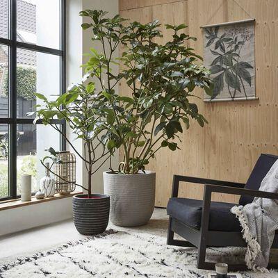 Capi plantekrukke Nature Row 43 x 41 cm antracitgrå KRWZ933