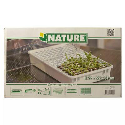Nature propagatorsæt 55x31x22 cm 6020203