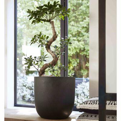 Capi plantekrukke Urban Smooth 35 x 34 cm sort KBL932