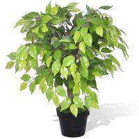 Kunstig Dværg Ficus med Potte 60 cm